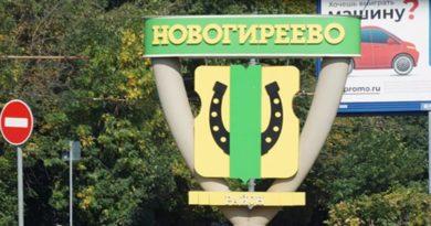 район новогиреево