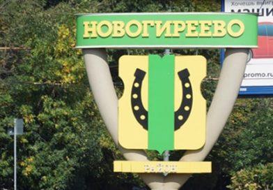 Дома, попавшие под реновацию в районе Новогиреево